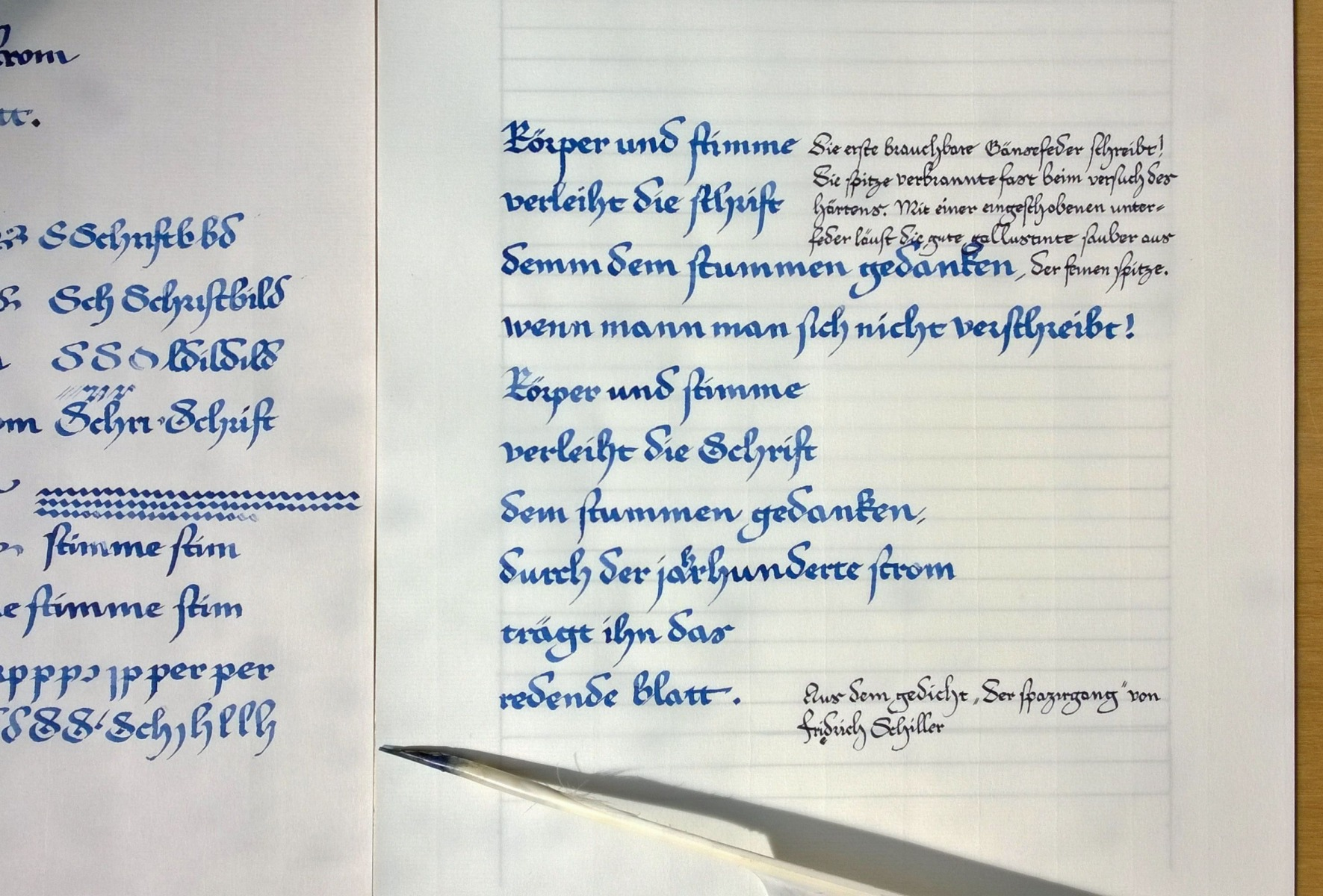 Gänsefeder-und-Gallus-Tinte
